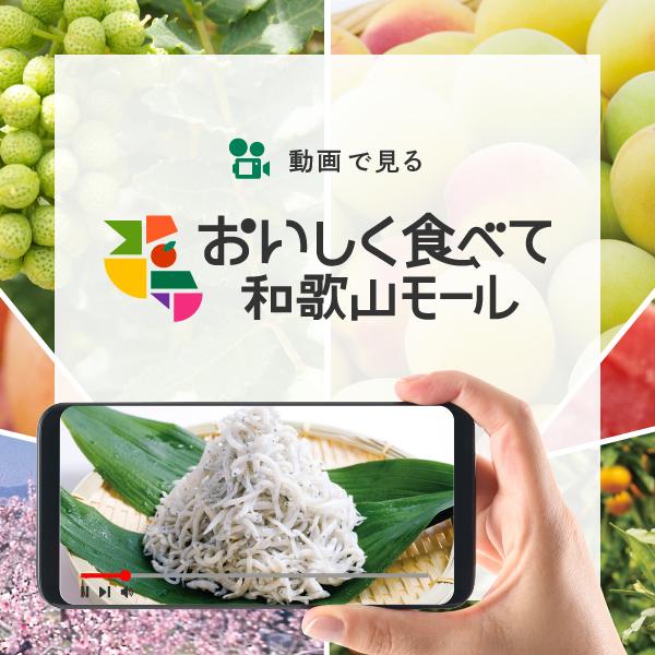 動画で見る おいしく食べて 和歌山モール