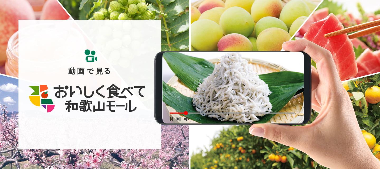動画で見る おいしく食べて和歌山モール