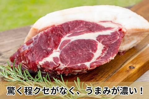 【肉塊】「イノシシ ロース肉」ブロック
