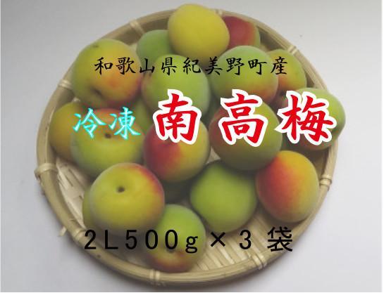 【冷凍】和歌山県産南高梅2Lサイズ500g 梅シロップ・梅酒用に