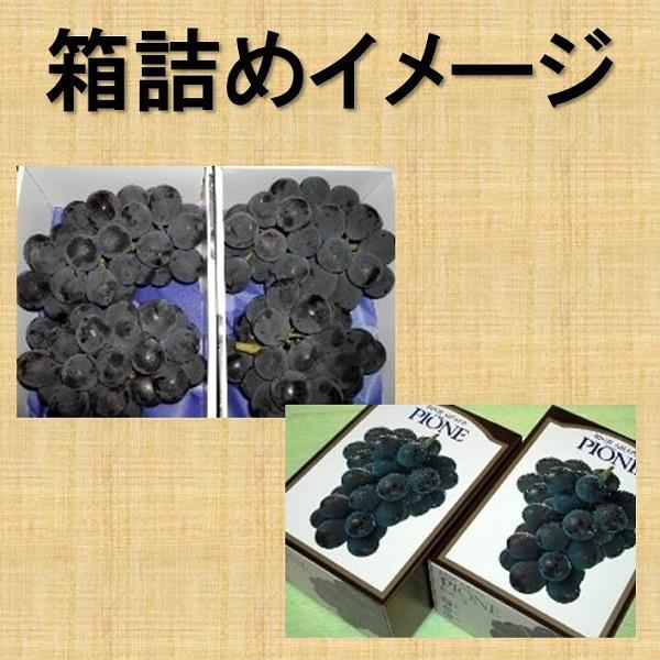 まるごと柿酢4