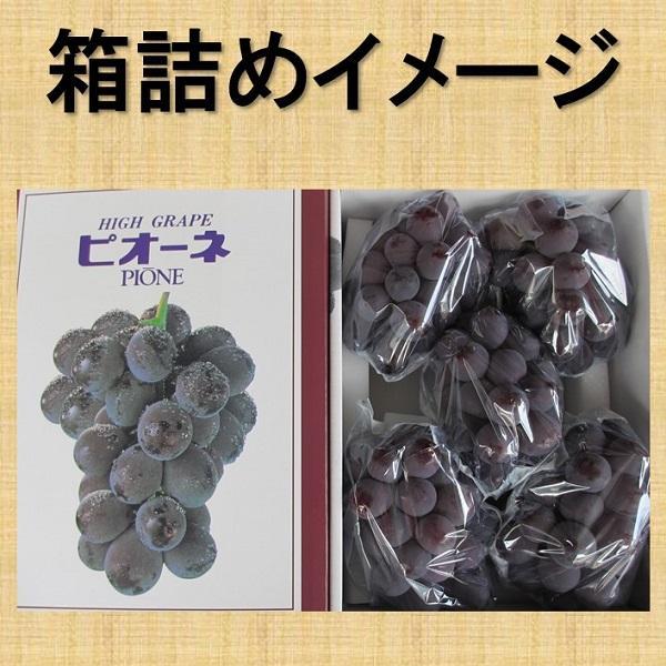 まるごと柿酢5