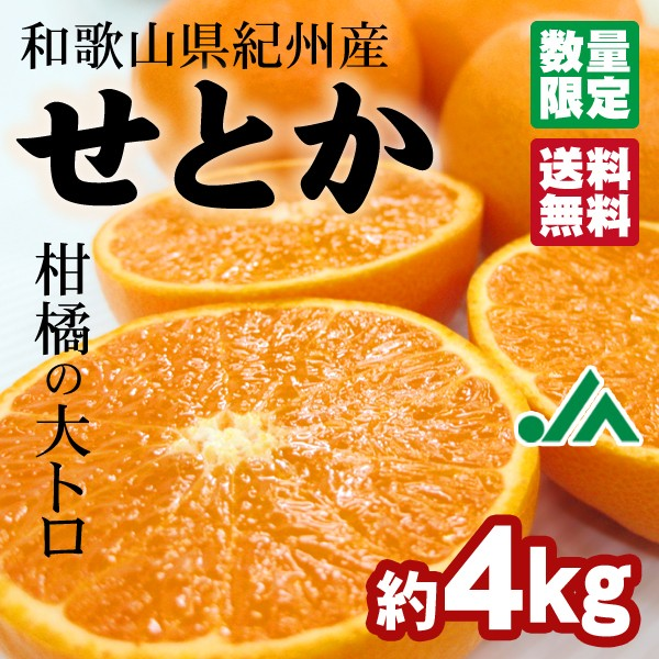 せとか 〜柑橘の大トロ 木熟 とろけるような食感のみかん