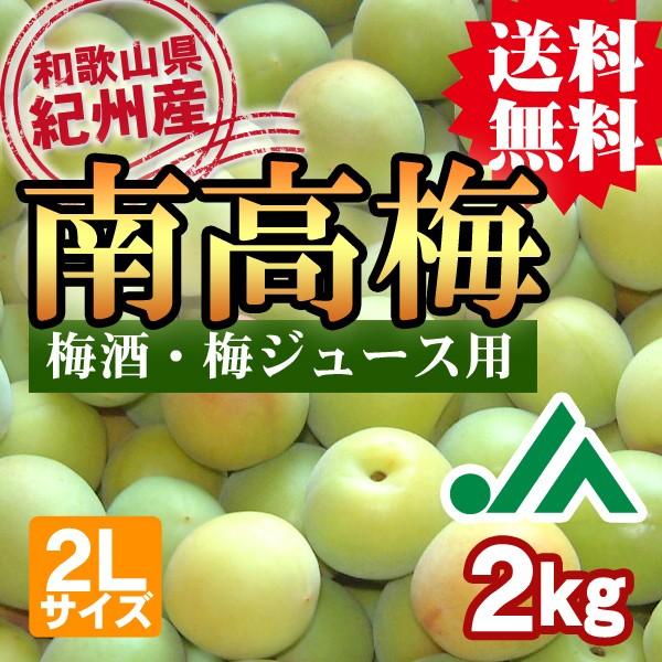 梅酒用・梅ジュース用 紀州産南高梅 2Lサイズ