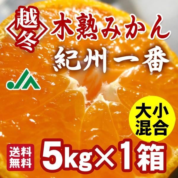 越冬木熟みかん「紀州一番」 5kg×1箱 送料無料4