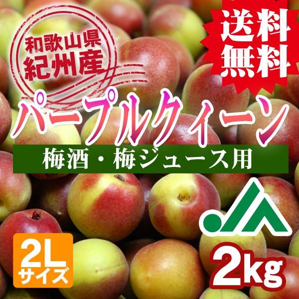 パープルクィーン 和歌山県の農協JA紀南だけのオリジナル品種 梅酒用・梅ジュース用 送料無料